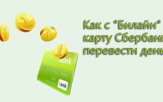 Как перевести деньги с Билайна на банковскую карту